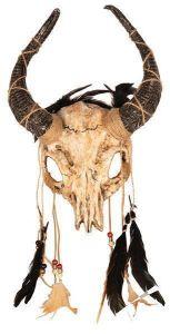 Masker Voodoo Skull