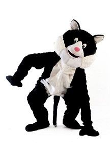 Mascotte Kat